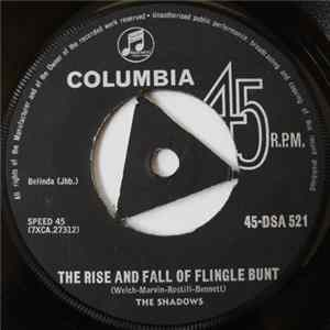 Descargar The Shadows - The Rise And Fall Of Flingel Bunt